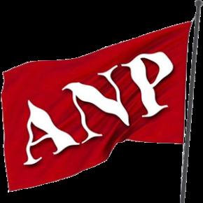 عوامی نیشنل پارٹی ( اے این پی)
